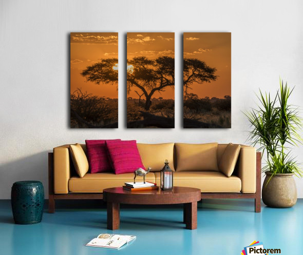 Silhouette of acacia tree at orange sunset; Botswana Split Canvas print