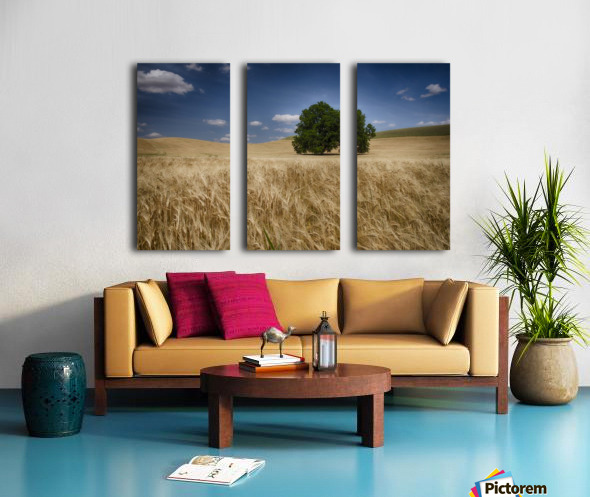 Lone tree in a wheat field; Palouse, Washington, United States of America Split Canvas print