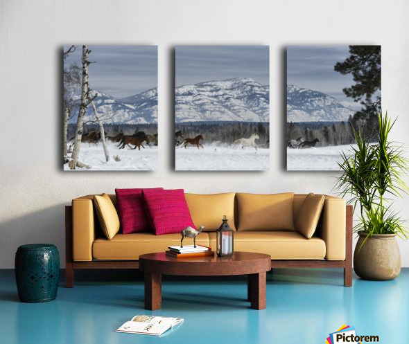 Horses running in the snow on a ranch in winter; Montana, United States of America Split Canvas print