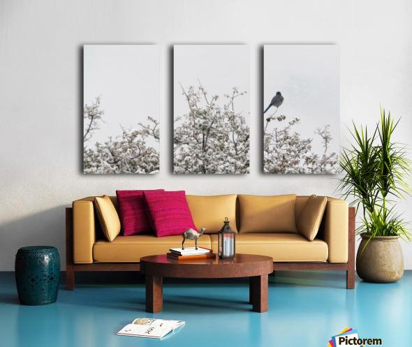 Bluebird in Snow 3VP Split Canvas print