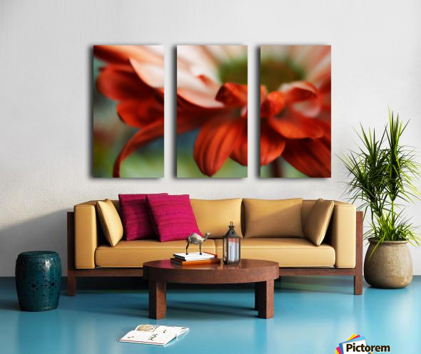 FPS-0007 Split Canvas print