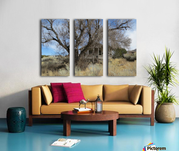 Turquoise Trail - This Old House 1VP Split Canvas print