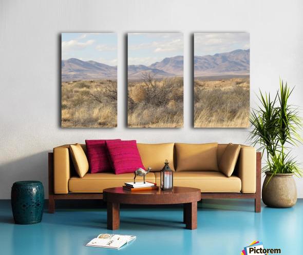 Landscape around Fort Craig VP1 Split Canvas print