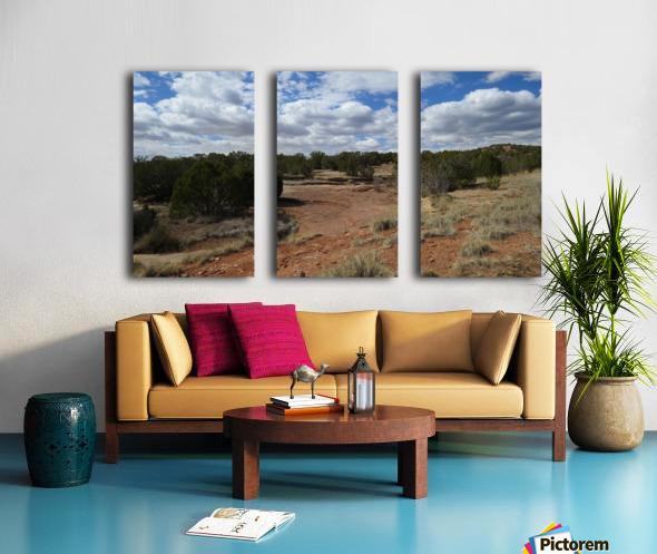 Landscape Near the Ruins of the Abo Pueblo VP9 Split Canvas print