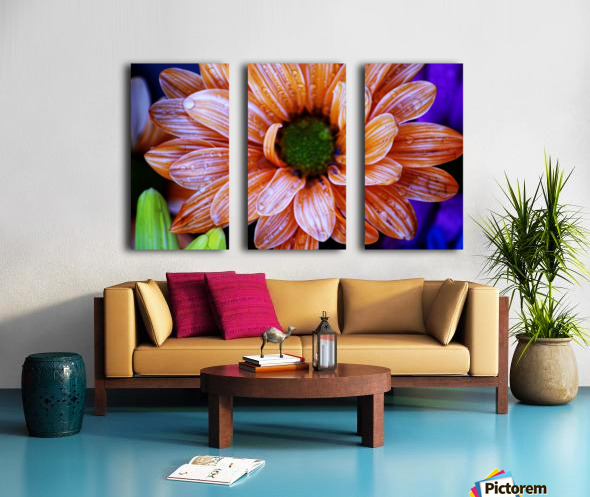 FPS-0058 Split Canvas print
