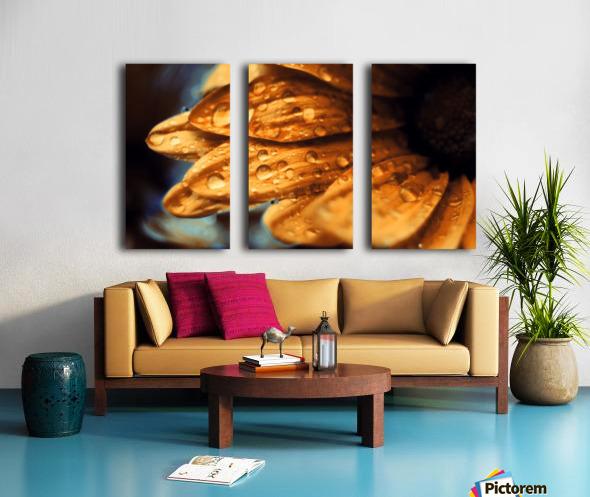 FPS-0069 Split Canvas print