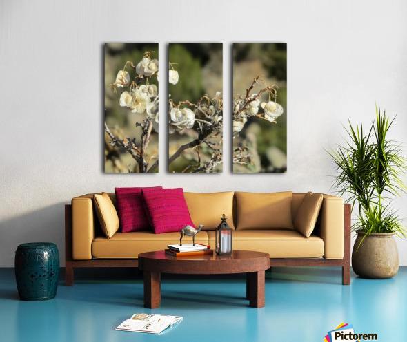 Weeds VP2 Split Canvas print