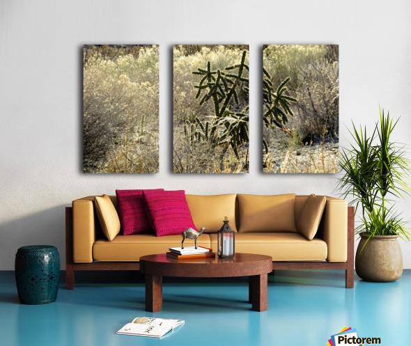 Shimmering  Cactus VP1 Split Canvas print