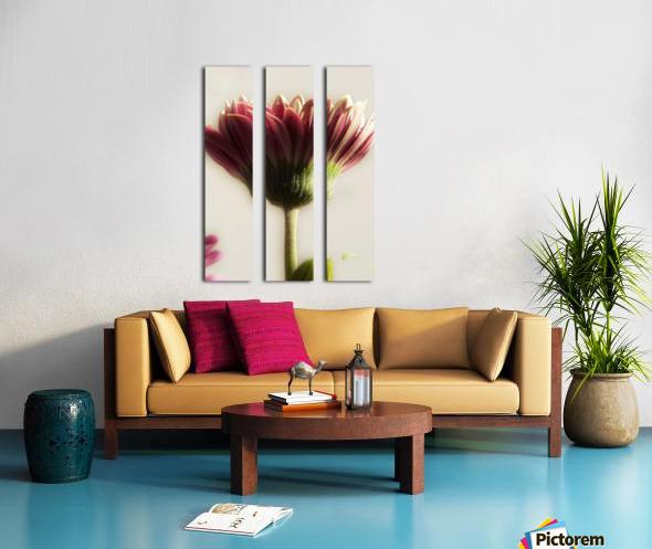 FPS-0075 Split Canvas print