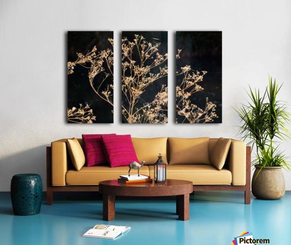 Natures Lace Split Canvas print