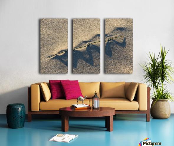 Grass Blade and Serpent Shadow Split Canvas print