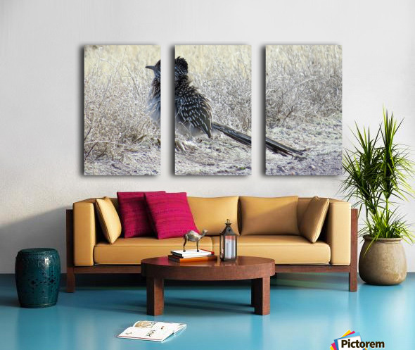 Roadrunner VP4 Split Canvas print