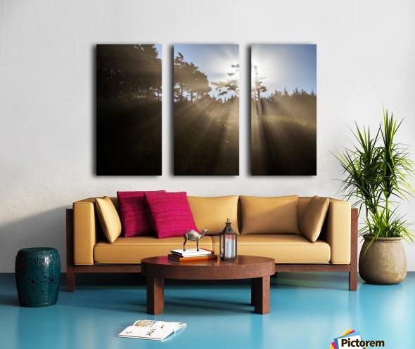 Sun Rays Split Canvas print