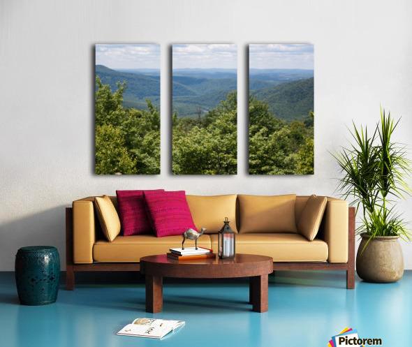 River Valley Split Canvas print