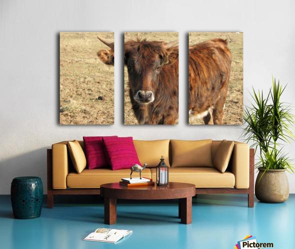 Bull in the Spring VP1 Split Canvas print