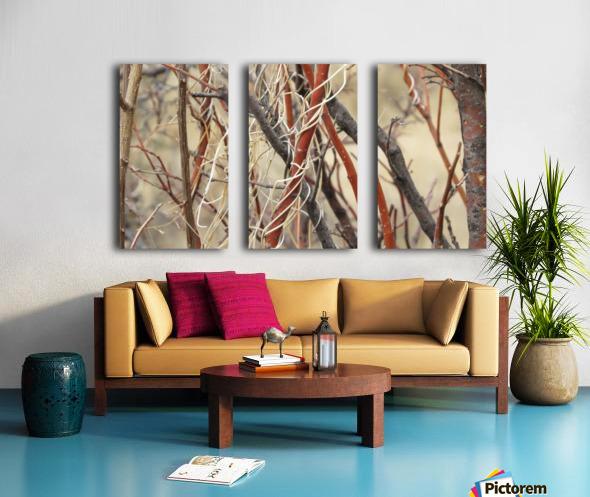 Twigs in the Sandia Mountains VP1 Split Canvas print