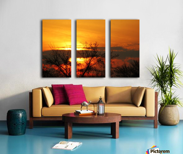 Morning Glow Split Canvas print