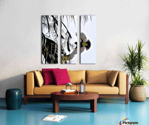 Orioles Abstract 1  Split Canvas print