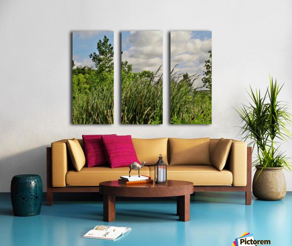 Cattails In The Wind Split Canvas print