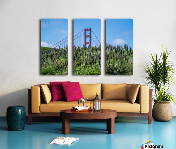 San Francisco Lupines Split Canvas print