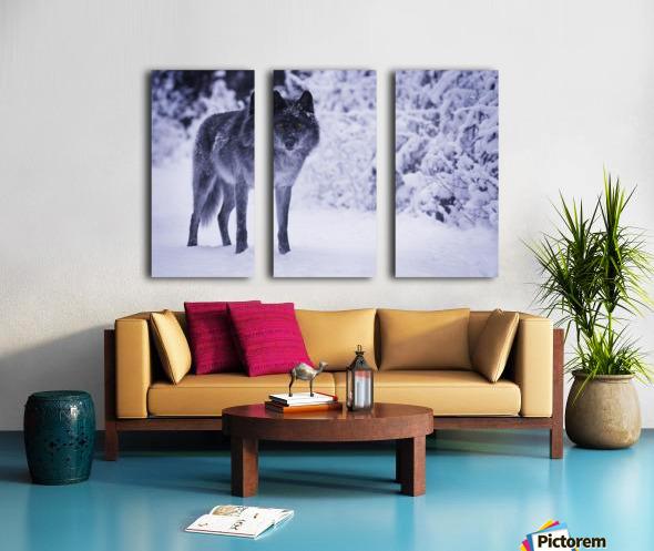 Wolf Split Canvas print