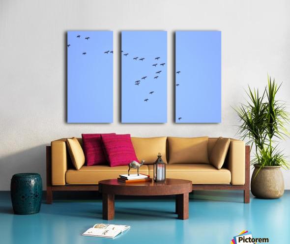 Flock of Geese 2 Split Canvas print