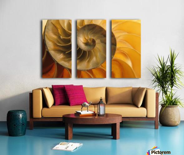 Inside Of Nautilus Shell Split Canvas print