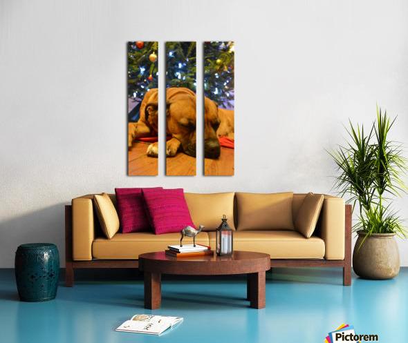 Karma  Split Canvas print