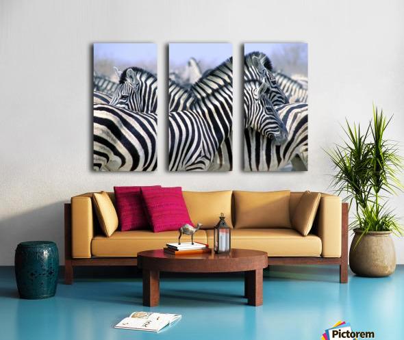 Burchell's Zebra (Equus Quagga Burchellii), Etosha National Park, Namibia, Africa Split Canvas print