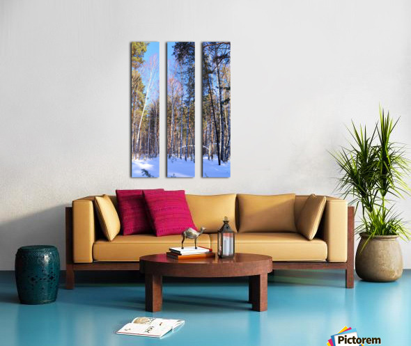Winter. Forest. Shadow Split Canvas print