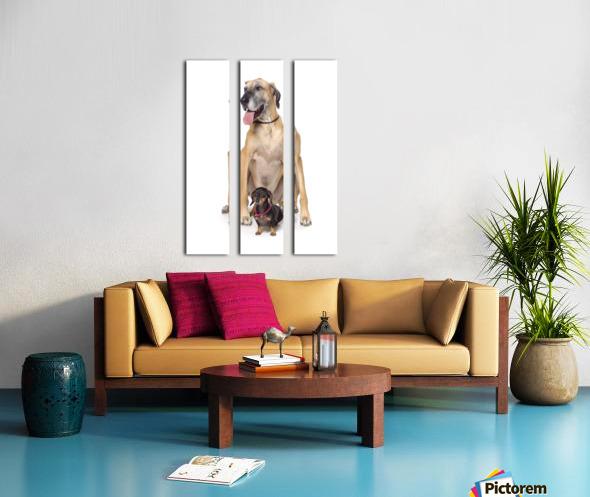 Great Dane And Dachshund Portrait Split Canvas print