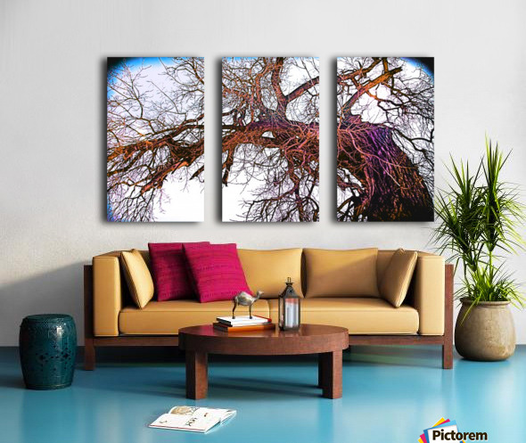 100yearOLDtree Split Canvas print