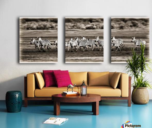 Running Zebras, Serengeti National Park, Tanzania, Africa Split Canvas print