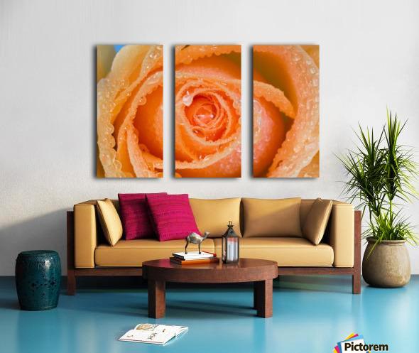 Orange Rose With Dew Split Canvas print