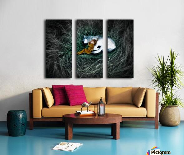 Unison with nature 2. Split Canvas print