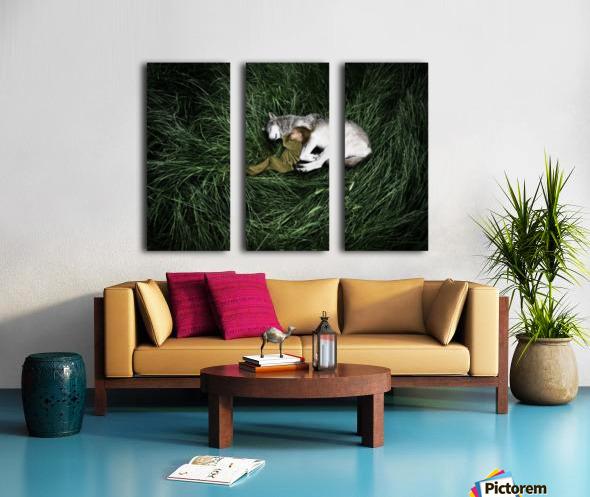 Unison with nature Split Canvas print