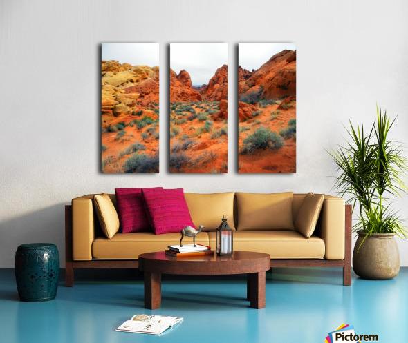 Desert Colors Split Canvas print