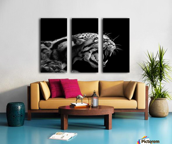 ANGER Split Canvas print