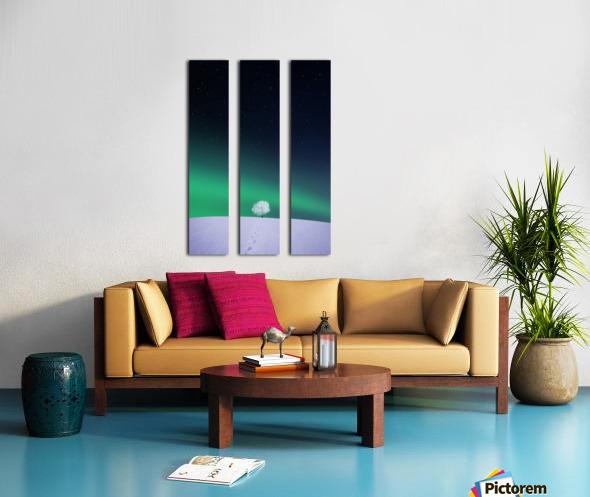 Apple Split Canvas print