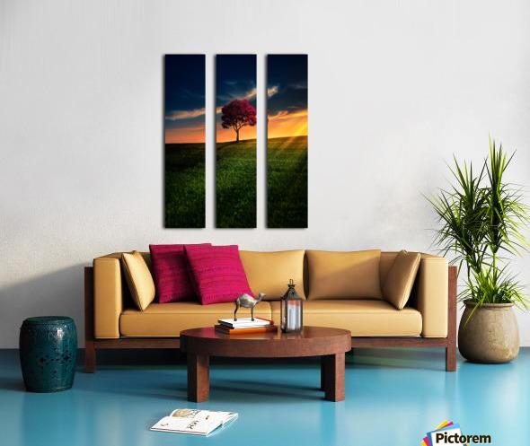 Awesome Solitude Split Canvas print