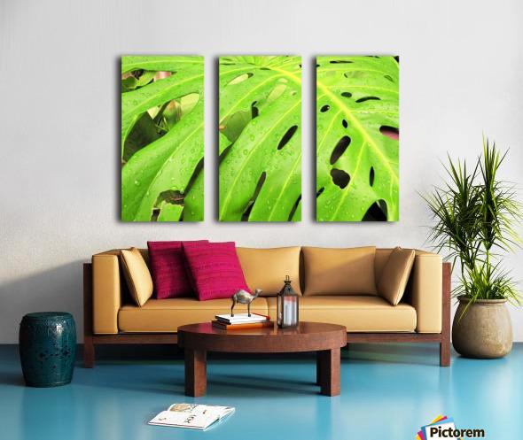 Nevis GR7 Split Canvas print