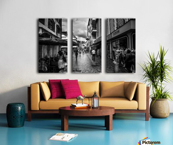 IMG_4616 Split Canvas print