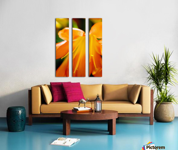 Extreme Close-Up Of Bright Orange Day Lily. Split Canvas print