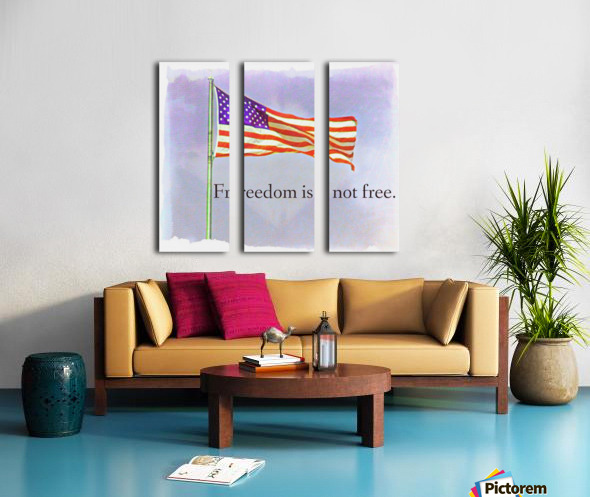 freedomIsnofree Split Canvas print