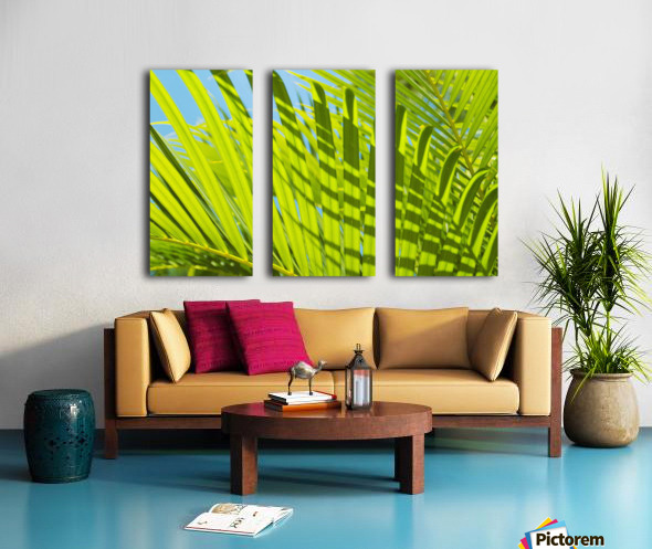 Close-Up Detail Of Light Green Palm Leaves With Shadow Pattern Against Blue Sky Split Canvas print