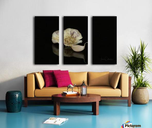 Garlic Split Canvas print