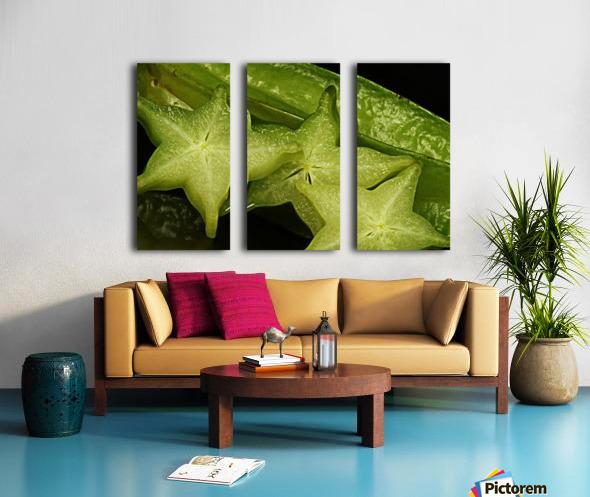 Star Fruit Split Canvas print