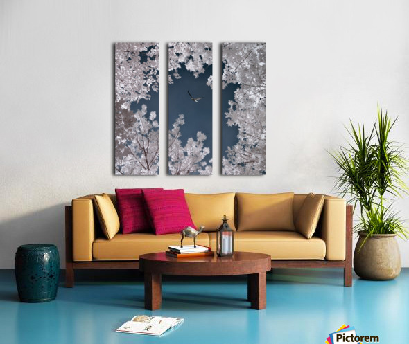 Freedom Split Canvas print