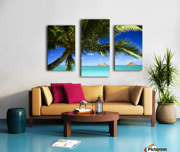 Hawaii, Oahu, Lanikai, Palm Tree Foreground, With Mokulua Islands Background, Sailboat In Turquoise Waters. Canvas print