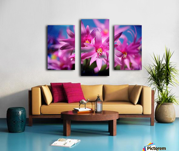 PinkShadows Canvas print